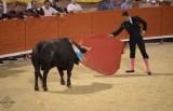 """""""Königskinder"""" beim Stierkampf in Palma de Mallorca"""