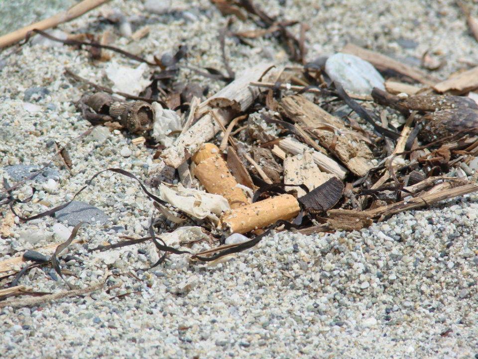 Zigarettenkippen am Strand auf Mallorca