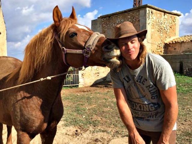 Brave Pferde zum Reiten auf Mallorca
