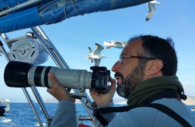 Birdwatching mit fetten Objektiven