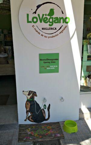 Hunde Ecke vor der Tür des Lo Vegano