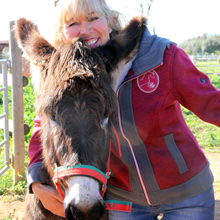 Roswitha liebt ihre Esel.