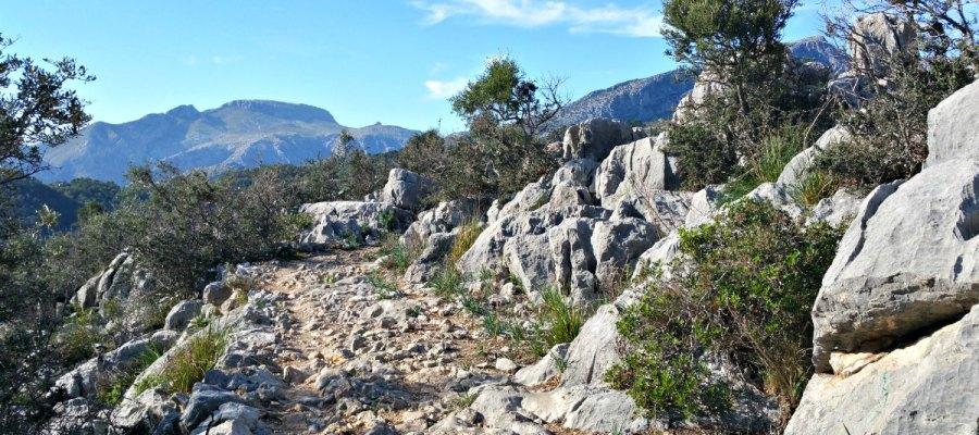 Wandern auf Mallorca der GR221