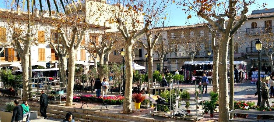 Markt in Santa Margalida