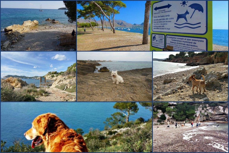 Überblick Hundestrände Mallorca