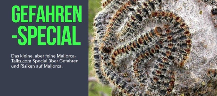E-Book Gefahren Special Mallorca