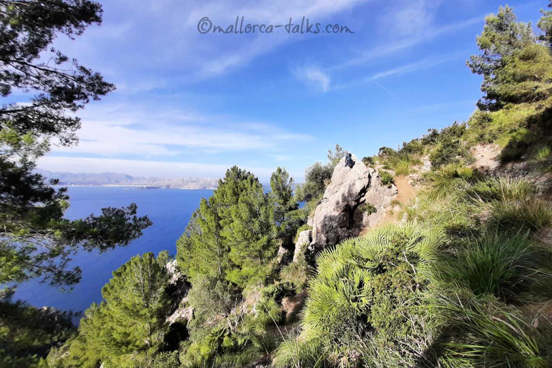 Wandertipp Alcudia: Die Kanonenwanderung Zum Penya des MIgdia