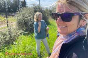 Mallorca Talks unterwegs mit Uta auf der Tour der essbaren Pflanzen auf Mallorca