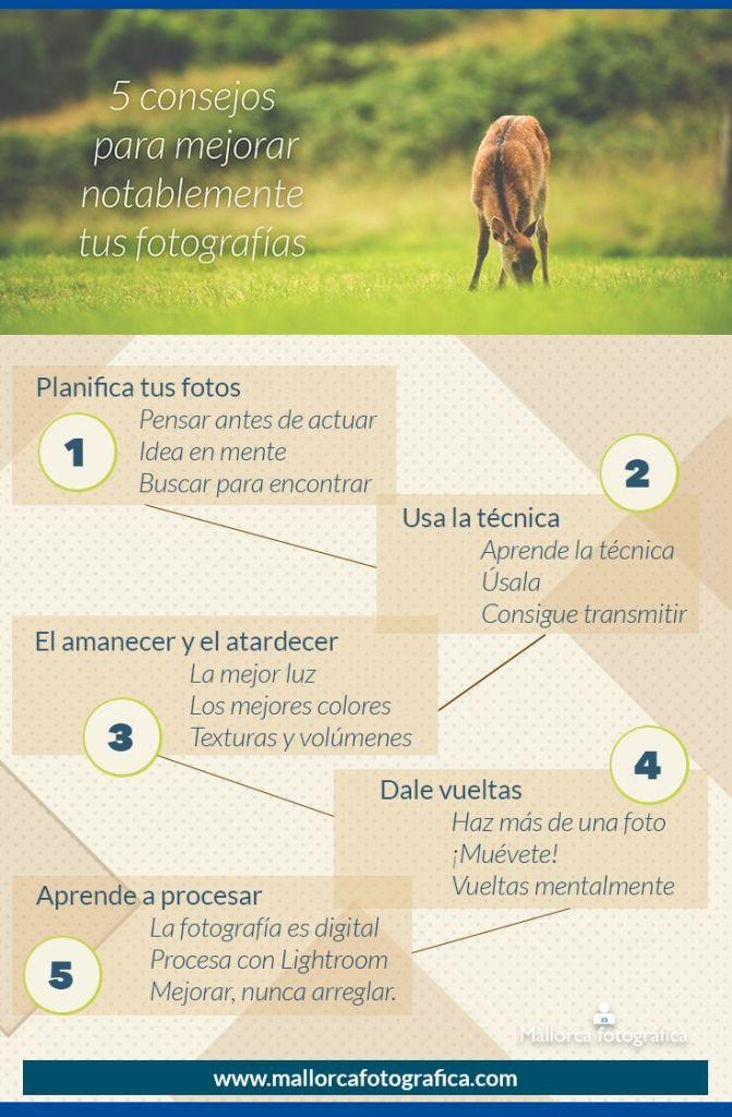 Infografía consejos fotografía