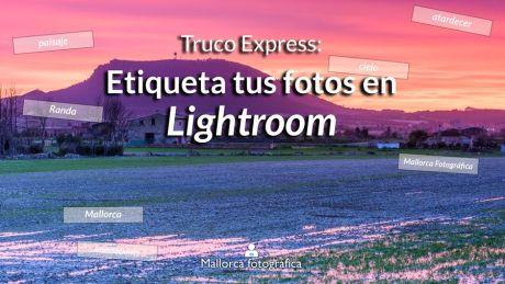 etiqueta tus fotos en Lightroom