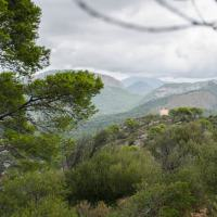 Wandern: Von Cala Fornells zum Piratenturm am Cap de Andritxol