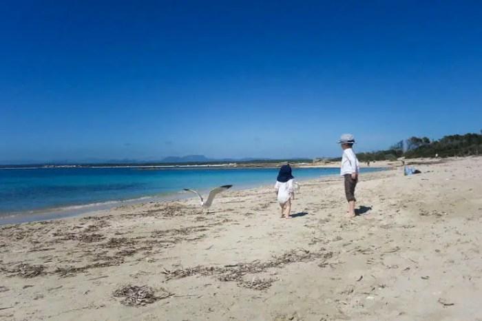 Mai auf Mallorca mit Kindern