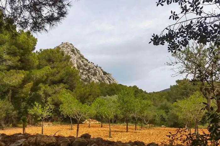 Klettertouren auf Mallorca