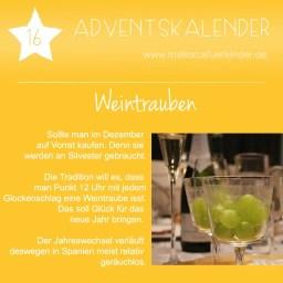 16_Weintrauben
