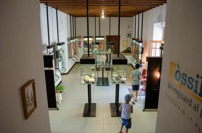 Naturkundemuseum Soller