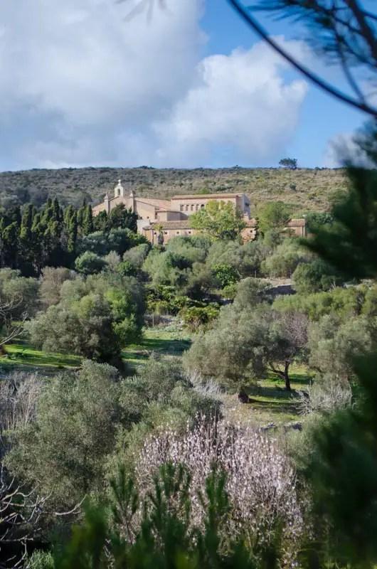 Weideland und Obstgärten der Ermita de Betlem