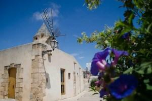 Mühlenviertel und Santa Catalina in Palma de Mallorca
