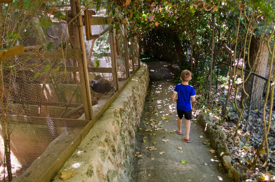 Natura Parc Mallorca: Der Zoo