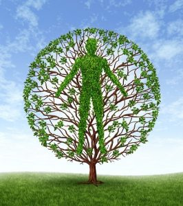 Human growth and development and personality development as a medical symbol of health as a tree with branches and green leaves in the shape of a persons anatomical body on a blue sky.