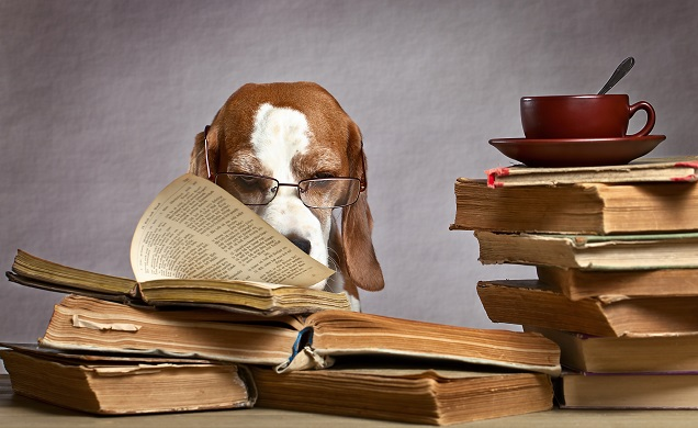 Lessons From The Traditional-Publishing Model Part One: THE BOOK, THE BOOK, THE BOOK!