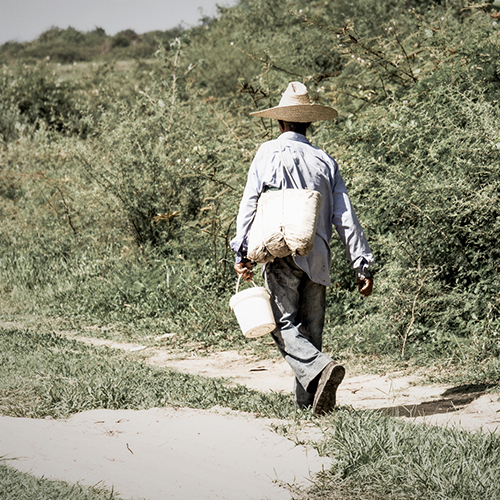 farmer on his way back home from work