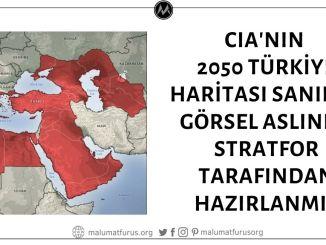 Görselin CIA'nın 2040 ya da 2050 Türkiye Haritası Olduğu İddiası Asılsız