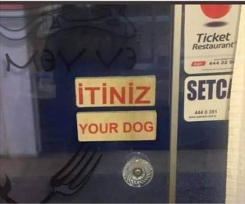 itiniz your dog