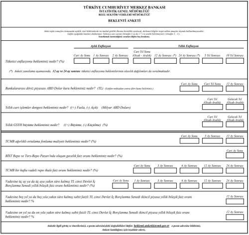 merkez bankası beklenti anketi soru formu