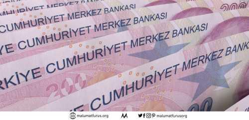 merkez bankası para basımı