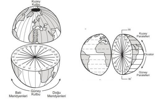 paraleller meridyenler