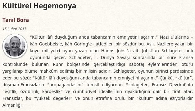 Tanıl Bora'nın Kültürel Hegemonya başlıklı yazısı