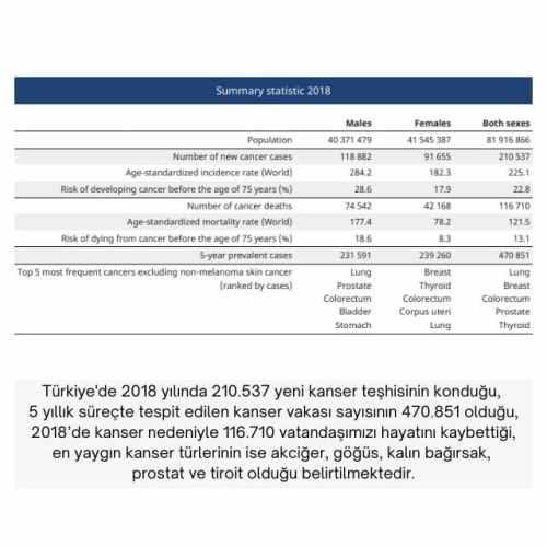 türkiye kanser istatistikleri