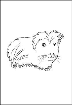 Haustieren Malvorlagen Und Ausmalbilder Zum Ausdrucken
