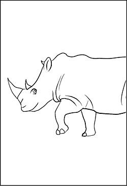 Ausmalbild Ausmalbild Nashorn 10 20 Malvorlagen Suchen