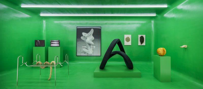 Mame Moda Gucci e Cattelan, The artist is present. Room 11