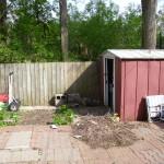 The Backyard-Summer Project