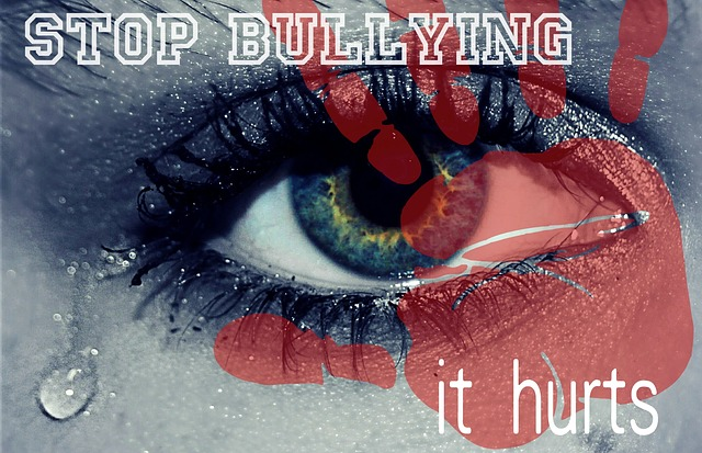 bullying affects everyone
