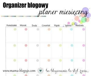 blogowy organizer planer