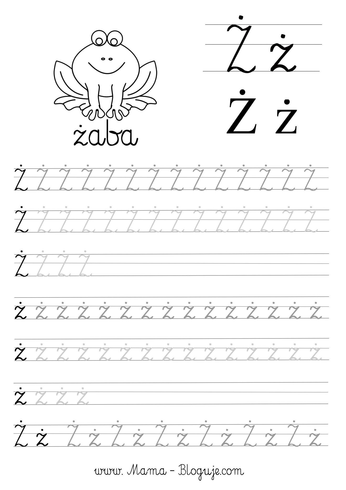 Literka zz nauka pisania - SZABLONY DO NAUKI PISANIA - 🇵🇱 POLSKIE LITERKI - CZ.3 - DO POBRANIA