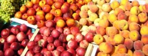 large_fruits-sel-aegina