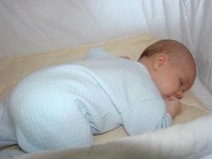 jax-sleeping1