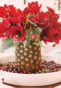 I absolutely love this one! One flat dish, filled with cranberries, one pineapple, carved to allow the insertion of Amaryllis blooms and the addition of little Christmas ornament if you wish - this will definitely be admired, whether you give it as a gift or use it in your Christmas decorations!