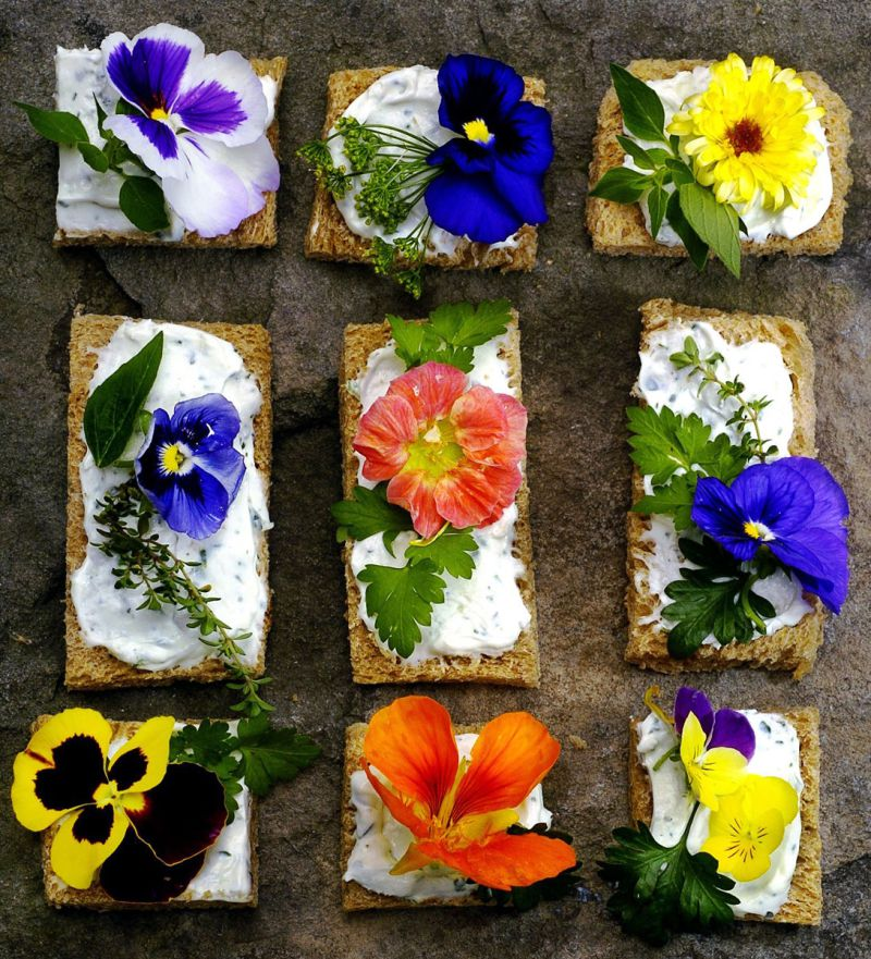 An assortment of edible flowers....assortment of edible flowers with cream cheese. (The Grand Rapids Press/ Paul L. Newby II)