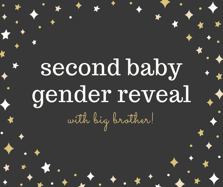 Second Baby Gender Reveal with Big Sibling