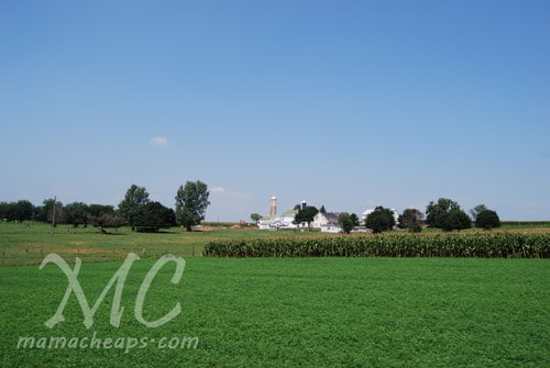 lancaster trip farmland 1