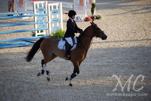 devon horse show 2011 b