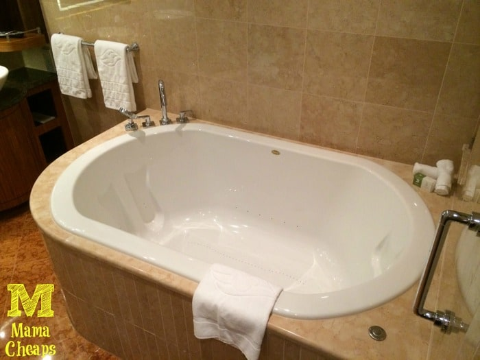 disney dream master bathtub