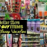 Disney Dollar Tree Must Buys Before Trip