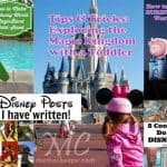 Top 5 Disney Posts