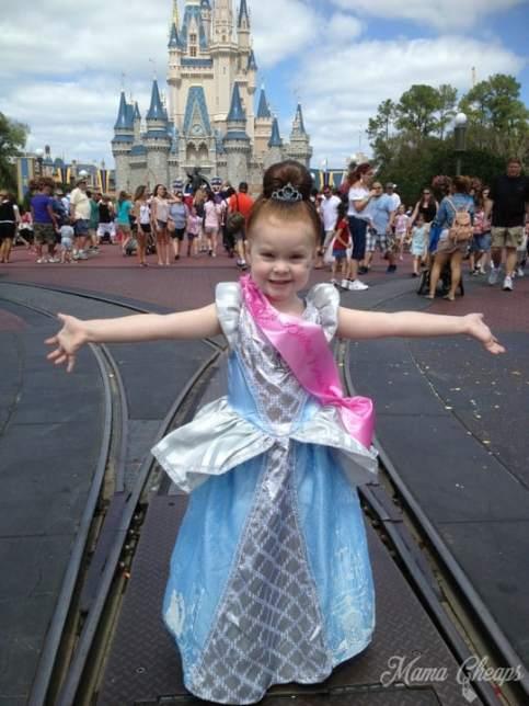 Cinderella Magic Kingdom